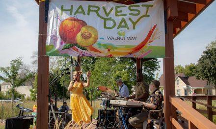 Dominic Inouye: On the art of community at Walnut Way's Harvest Day