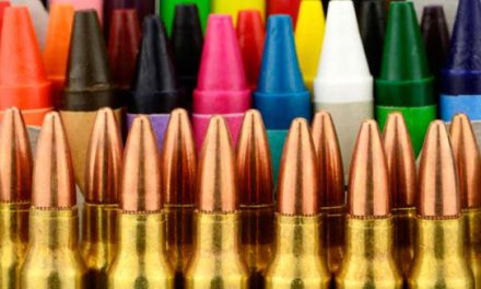 Wisconsin comes to terms with repercussions of armed security after cluster of school shootings