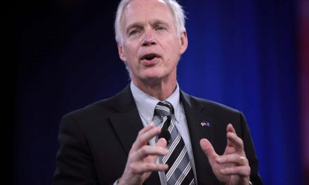Senator Ron Johnson is playing the fool on Trump's behalf in order to wreck the Postal Service