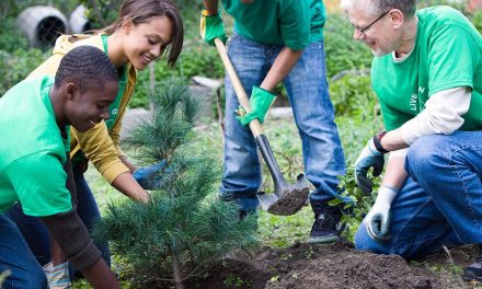 Measuring Equity with Urban Forests: How planting trees helps build prosperous and healthy communities