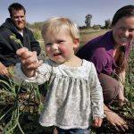 Family farms face an harsh future as young farmers struggle with health insurance and child care