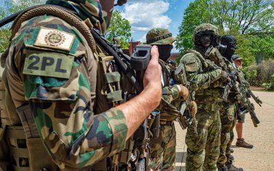Avoiding mob rule: Why the Second Amendment does not protect vigilantes who masquerade as militia